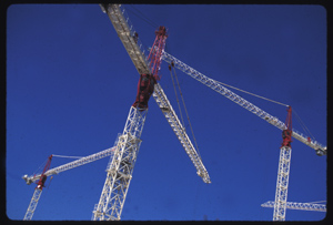 Cranes in celebration, Wellington, New Zealand, © 1995, J. A. Clapp